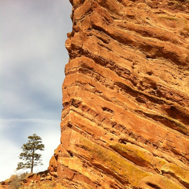 Sometimes we are the rock and sometimes we are the tree  Red Rocks, Colorado.